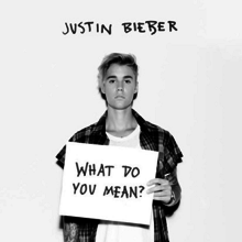 JustinBieberWhatDoYouMeanCover